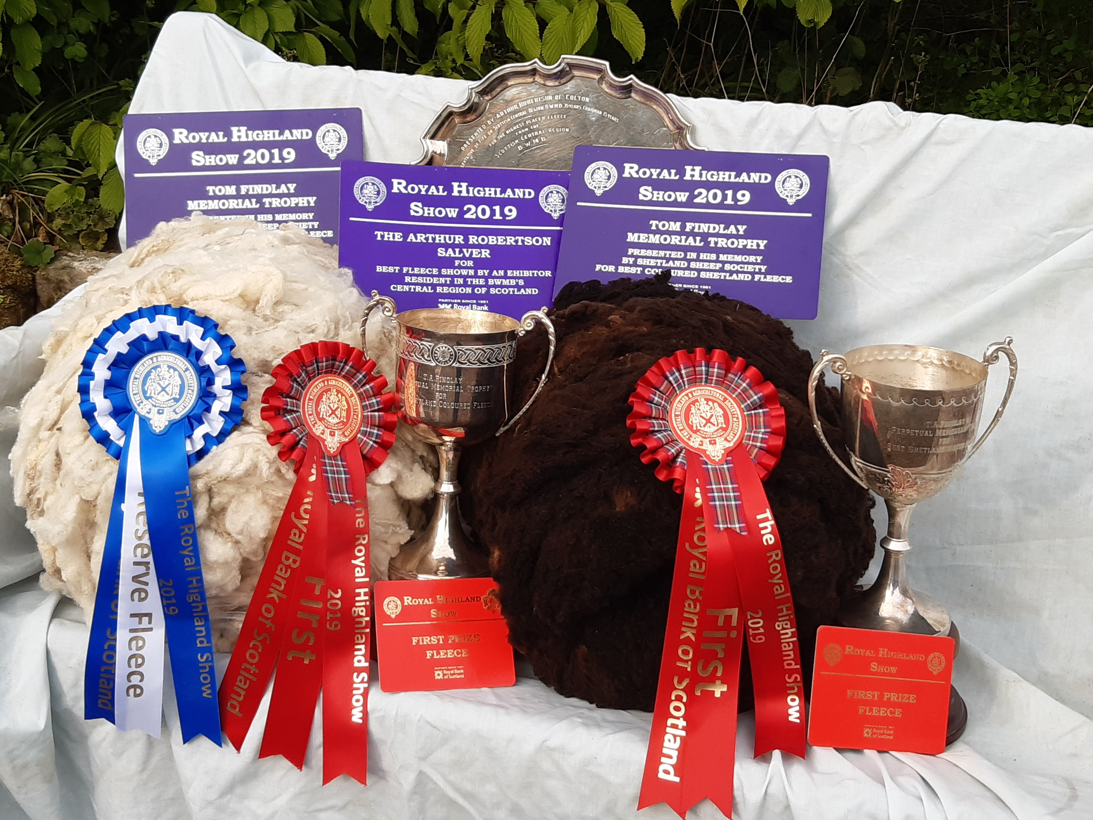 Shetland Fleeces from the award winning